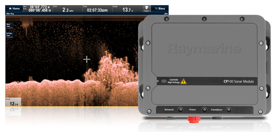 DownVision Transducers for CP100 Sonar Module | Raymarine